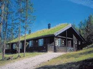 Gala Fjellgrend